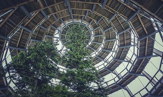 Der Baumwipfelpfad im Bayerischen Wald