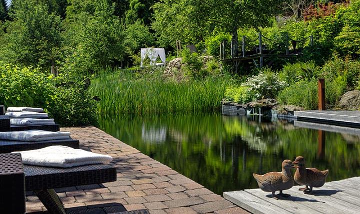 Burghotel sterr wellnesshotels bayern for Naturteich im garten