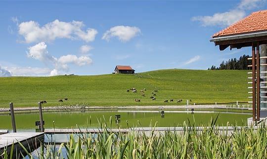 Natursee mit Haus und Steg