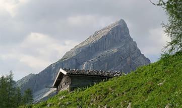 Angebot Auszeit Predigtstuhl & Gletschernelke