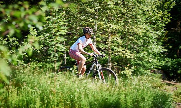Freizeittipp  Mountainbiking durch die Natur