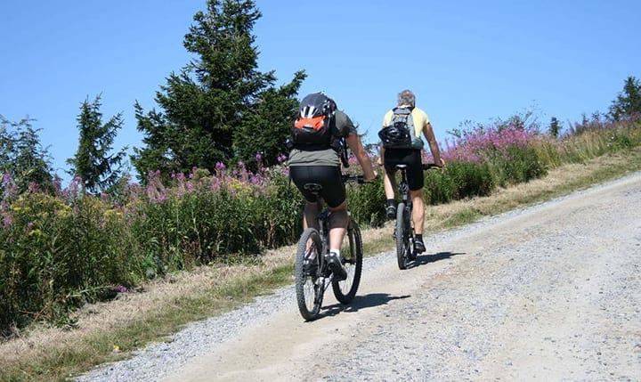 Freizeittipp  Mit dem Mountainbike im Lamer Winkel