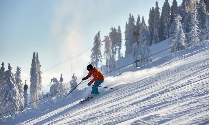 Freizeittipp  Ski & Snowboard Programm im Winter
