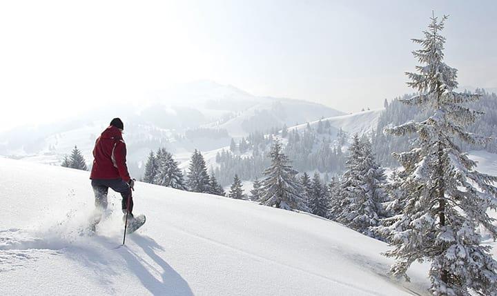 Freizeittipp  Winter im Bayerwald