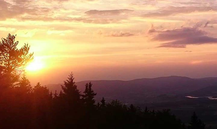 Freizeittipp  Wandern im Bayerischen Wald