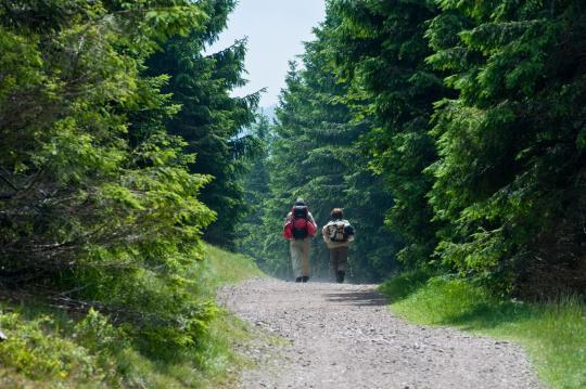 Freizeittipp  Wandern mit Natur und Kultur