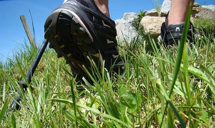 Freizeittipp  Wandern & Nordic Walking durch die Natur